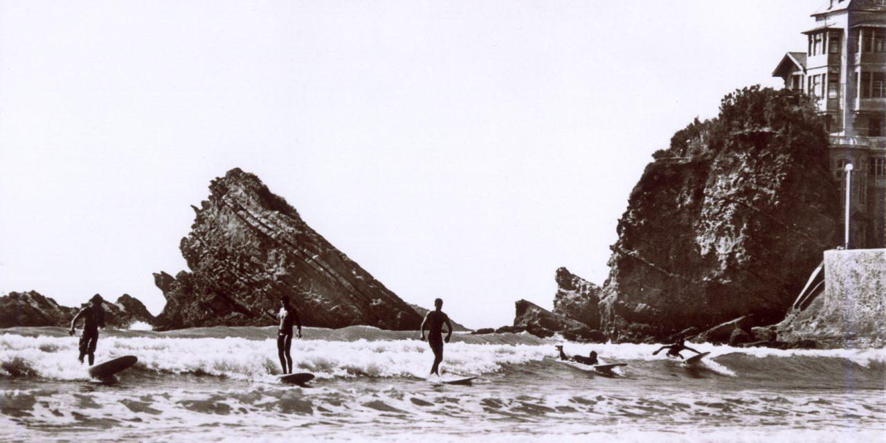 Le surf dans l'ADN